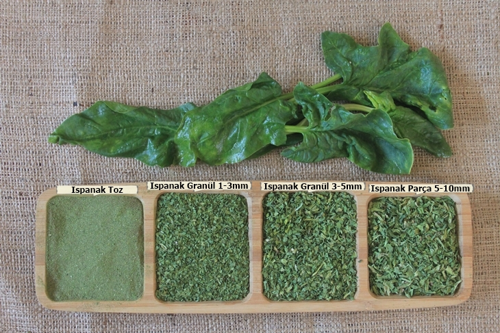dried spinach -2